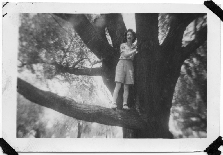 Woman in a tree