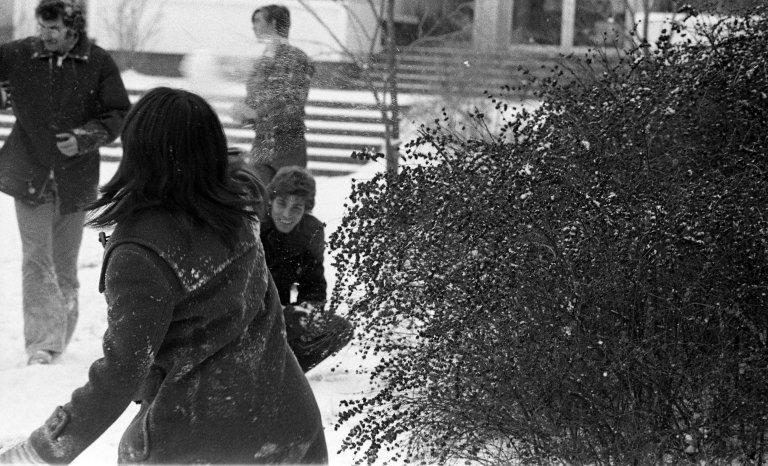 Snow Scenes 15