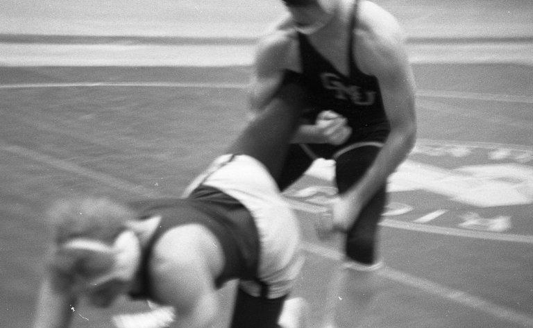 Wrestling 13