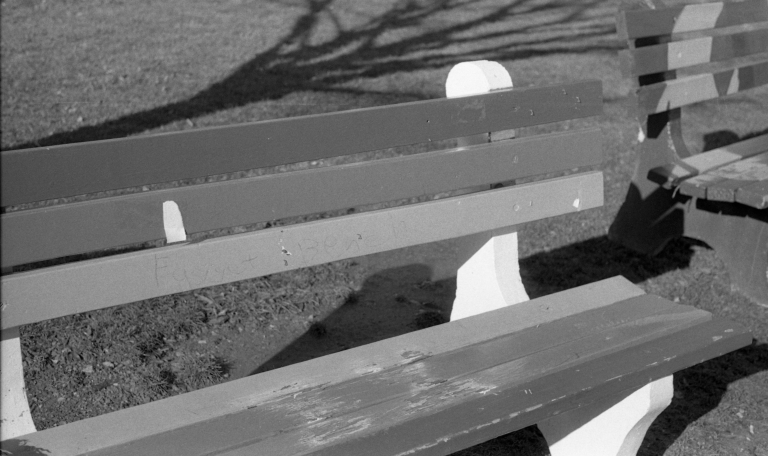 Rainbow bench quad 13