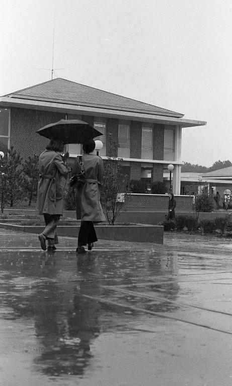 Wet Campus 5
